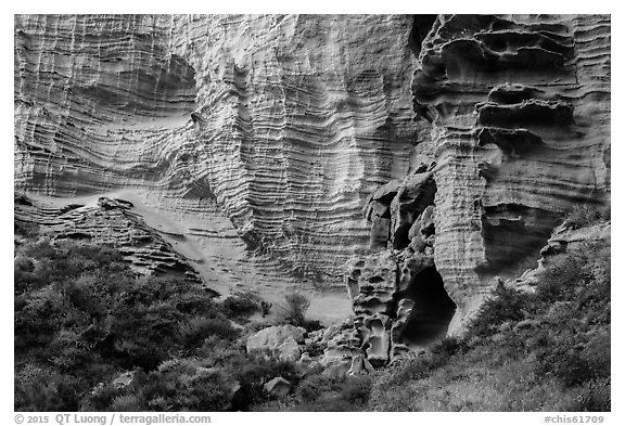 Base of sculpted sandstone cliffs, Lobo Canyon, Santa Rosa Island. Channel Islands National Park (black and white)