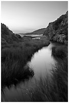Wetland at he bottom of Water Canyon, and Ocean, sunrise, Santa Rosa Island. Channel Islands National Park ( black and white)