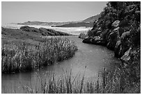 Stream at the mouth of Water Canyon, Santa Rosa Island. Channel Islands National Park ( black and white)