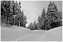 Snow-covered road. Crater Lake National Park, Oregon, USA. (black and white)