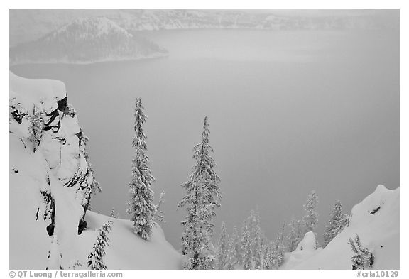 Trees and mistly lake in winter. Crater Lake National Park (black and white)