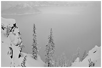 Trees and mistly lake in winter. Crater Lake National Park, Oregon, USA. (black and white)
