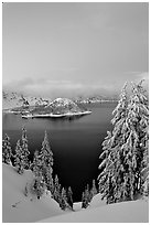 Wizard Island and Lake at dusk, framed by snow-covered trees. Crater Lake National Park, Oregon, USA. (black and white)