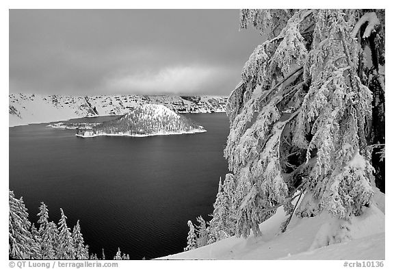 Trees and Wizard Island in winter with clouds and dark waters. Crater Lake National Park (black and white)
