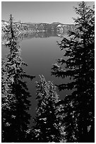 Trees and Lake. Crater Lake National Park, Oregon, USA. (black and white)