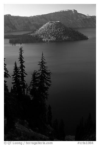 Conifer trees, Lake and Wizard Island. Crater Lake National Park (black and white)