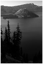 Conifer trees, Lake and Wizard Island. Crater Lake National Park ( black and white)