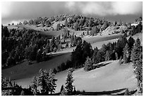 Volcanic hills and pine trees. Crater Lake National Park ( black and white)