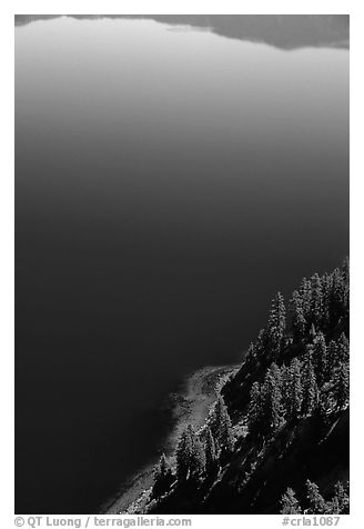 Trees and blue lake waters. Crater Lake National Park (black and white)