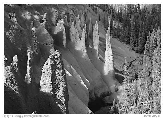 Pinnacles rising from Sand Creek Canyon. Crater Lake National Park (black and white)