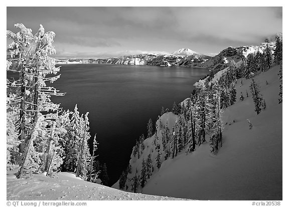 Snow-covered trees and dark lake waters. Crater Lake National Park (black and white)