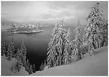 Trees, Wizard Island, and lake, winter dusk. Crater Lake National Park, Oregon, USA. (black and white)