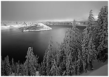 Conifers, Lake and Wizard Island, winter sunrise. Crater Lake National Park, Oregon, USA. (black and white)