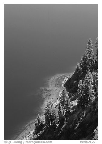 Pine trees and blue waters. Crater Lake National Park (black and white)