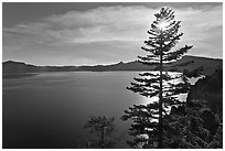 Lake and sun shining through pine tree, afternoon. Crater Lake National Park, Oregon, USA. (black and white)