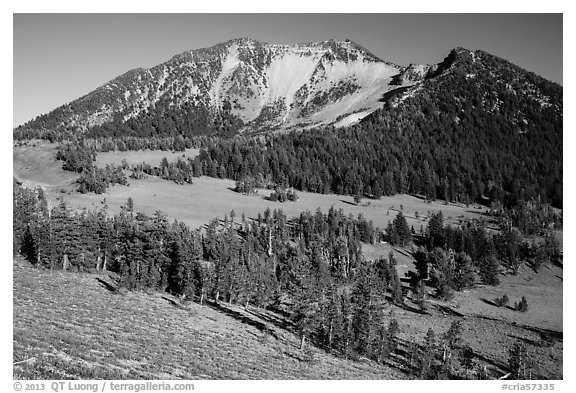 Mount Scott from the base. Crater Lake National Park (black and white)