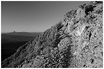 Mount Scott trail. Crater Lake National Park ( black and white)