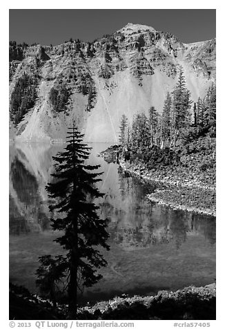 Hemlock, Watchman reflection, and clear waters, Wizard Island. Crater Lake National Park (black and white)