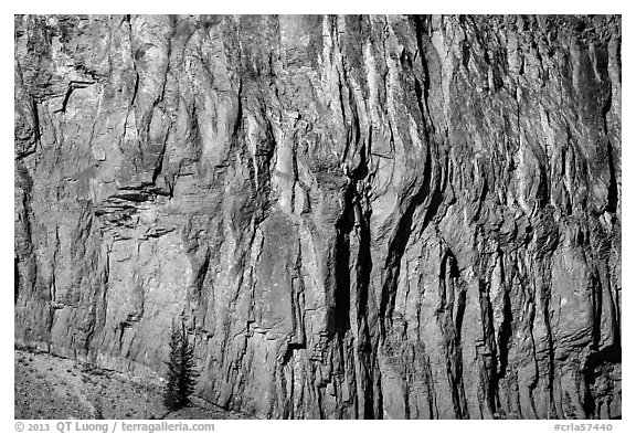 Cliff detail. Crater Lake National Park (black and white)