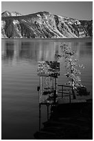 Water Level recording gauge tower, Cleetwood Cove. Crater Lake National Park ( black and white)