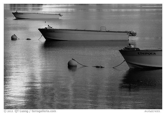Tour boats and golden reflections, Cleetwood Cove. Crater Lake National Park (black and white)