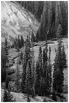 Godfrey Glen Meadow and ash cliffs. Crater Lake National Park ( black and white)