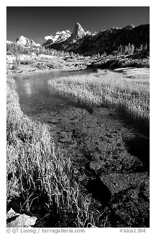 Stream and Mountains. Kings Canyon National Park (black and white)