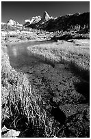 Stream and Mountains. Kings Canyon National Park ( black and white)