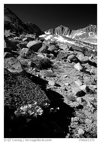 Mountains near Sawmill Pass, morning. Kings Canyon National Park (black and white)