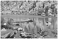 Lake and tree reflections, Lower Dusy Basin. Kings Canyon National Park, California, USA. (black and white)