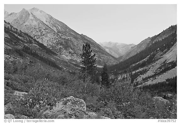 Looking south in Le Conte Canyon at dusk. Kings Canyon National Park (black and white)