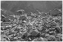 Boulders in meadow above Le Conte Canyon. Kings Canyon National Park, California, USA. (black and white)