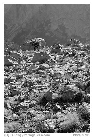 Boulders in meadow and Le Conte Canyon walls. Kings Canyon National Park (black and white)