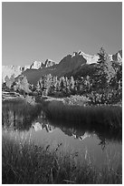 Grasses and mountains reflections, Lower Dusy basin. Kings Canyon National Park ( black and white)