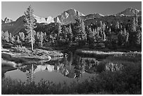 Trees, grasses, calm reflections, Lower Dusy basin. Kings Canyon National Park, California, USA. (black and white)