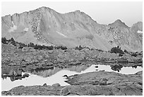 Mountains reflected in calm alpine lake at dawn, Dusy Basin. Kings Canyon National Park ( black and white)
