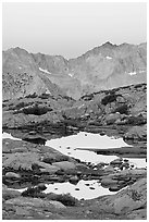 Alpine tarns and mountains, dawn, Dusy Basin. Kings Canyon National Park, California, USA. (black and white)