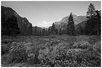Meadow and cliffs at sunset, Cedar Grove. Kings Canyon National Park, California, USA. (black and white)