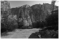 Rushing river and trees, and cliff in spring. Kings Canyon National Park ( black and white)