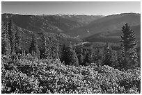 View over Hume Lake and Sierra Nevada from Panoramic Point. Kings Canyon National Park, California, USA. (black and white)