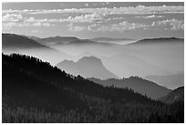 Distant sequoia forest and ridges. Kings Canyon National Park, California, USA. (black and white)