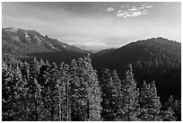 Redwood Mountain valley. Kings Canyon National Park, California, USA. (black and white)