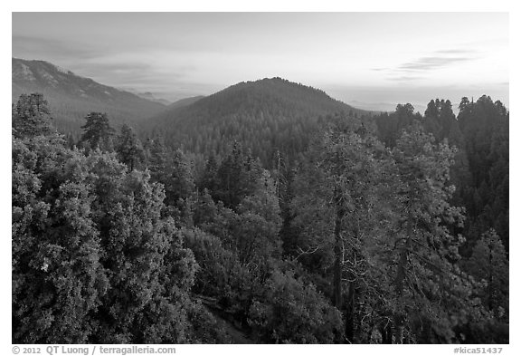 Redwood Canyon from above, sunset. Kings Canyon National Park (black and white)