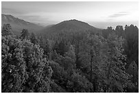 Redwood Canyon from above, sunset. Kings Canyon National Park, California, USA. (black and white)