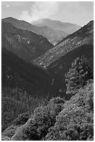 Valley carved by the Kings River. Kings Canyon National Park ( black and white)