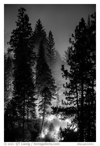 Control burn. Kings Canyon National Park (black and white)