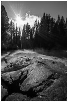 Meadow and sun see from top of Mark Twain Stump. Kings Canyon National Park ( black and white)