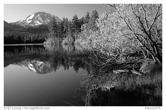 manzanita lake black personals Three ways to view car/truck ads: all cars & trucks (dealer + by-owner) by-owner only (private party, no dealers) by-dealer only.