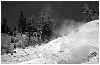 Sulphur works thermal area. Lassen Volcanic National Park, California, USA. (black and white)