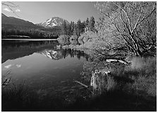 Lassen Peak reflected in Manzanita Lake, morning. Lassen Volcanic National Park, California, USA. (black and white)